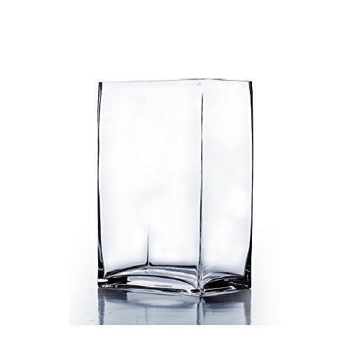 WGV Clear Rectangle Block Glass Vase, 4 by 6 by 10-Inch