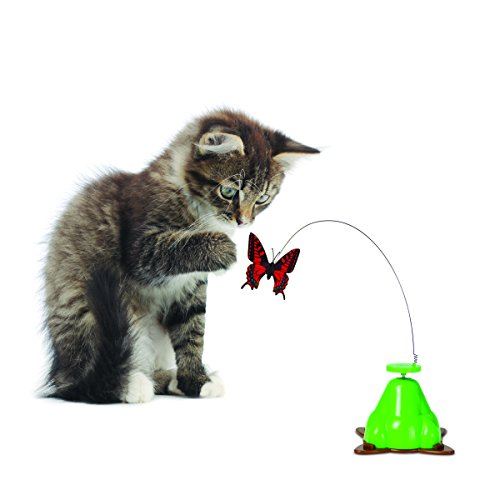 Butterfly Cat Toy Amazon