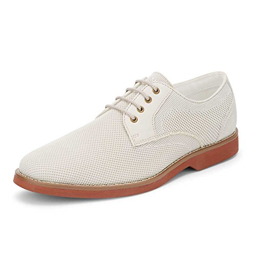 Gh Bass & Co. Menns Proctor Oxford Østers