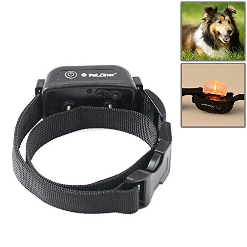 color2 The Trainning Collar for Dog hyx 1 for 2 1000m Dog Training System with Rechargeable and Waterproof Receiver Collar (color   color2)