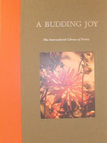 A Budding Joy PDF