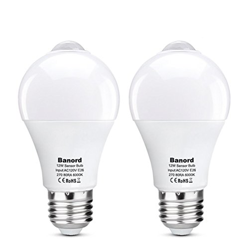 Led Motion Light Bulb in Florida - 5