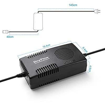 Roypow 120W (Max 150W) Power Supply AC to DC Adapter 110V/120V to 12V Car Cigarette Lighter Socket 12V/10A DC Power Converter Transformer: Sports & Outdoors