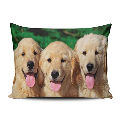 WEINIYA Home Custom Decor Adorable Little Golden Retriever Throw Pillow Cover Exquisite One Side Printed Patterning Lumbar 12x20 Inches