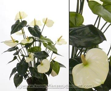 Kunstpflanzen Discount amazon de kunstblume anthurium mit 13 weißen blüten und einer höhe