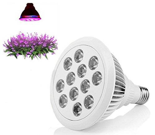 LED Grow Light 12W 3 Band Wavelengths 460nm 630nm 660nm Indoor Growing High Efficiency Review