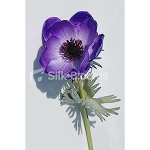 Single Artificial Fresh Touch Purple Anemone, Silk Purple Poppy 9