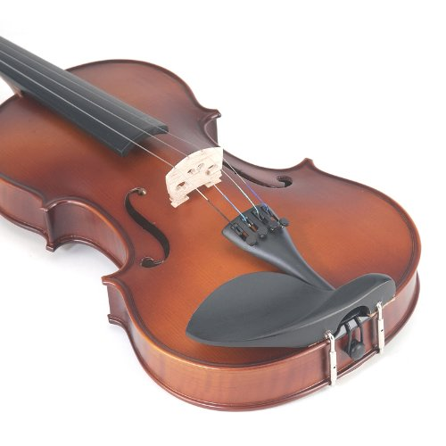 Violin Body Detail