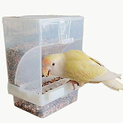 Comedero topb No Pajarera Juego de medición Bird Feeder Parrot ...