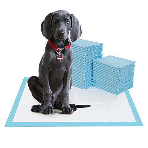 BESTLE Large Pet Training and Puppy Pads Pee Pad for Dogs 24