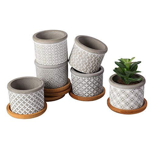 T4U 2.25 Inch Cement Succulent Pot with Bamboo Tray, Small Grey Concrete Planter Garden Cactus Plant Herb Container for Home and Office Decoration Birthday Wedding Gift Pack of 6