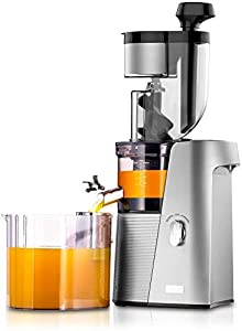 SKG A10 Slow Masticating Wide Chute Cold Press Juicer