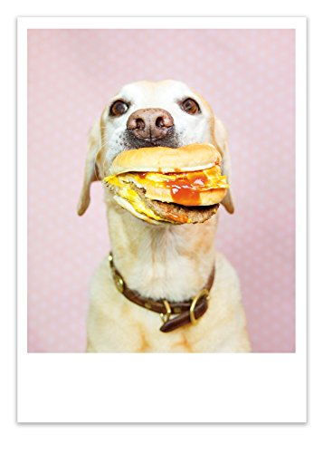 Palm Press Inc. - Birthday Card Dog with Burger - 1 Card & Envelope - Printed in USA