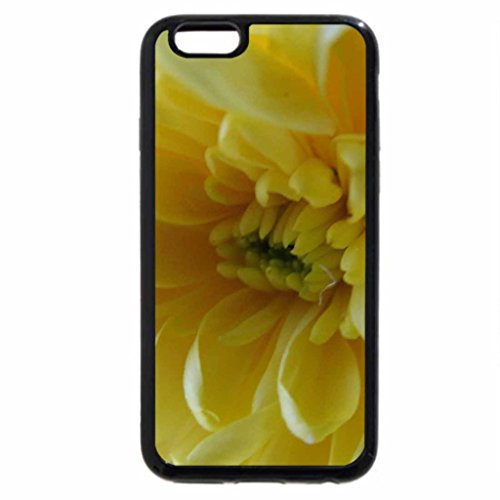 iPhone 6S / iPhone 6 Case (Black) Lemon Centres