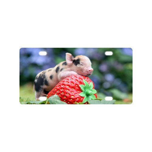 Personalized Novelty Tag Cute Piglet With Strawberry Durable Aluminum Car License Plate 12
