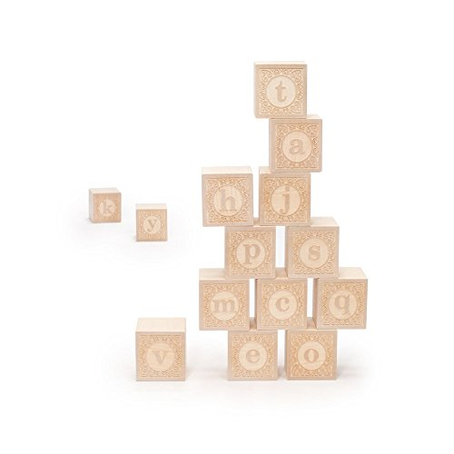 (Uncle Goose Lowercase Alphablank Blocks - Made in USA)