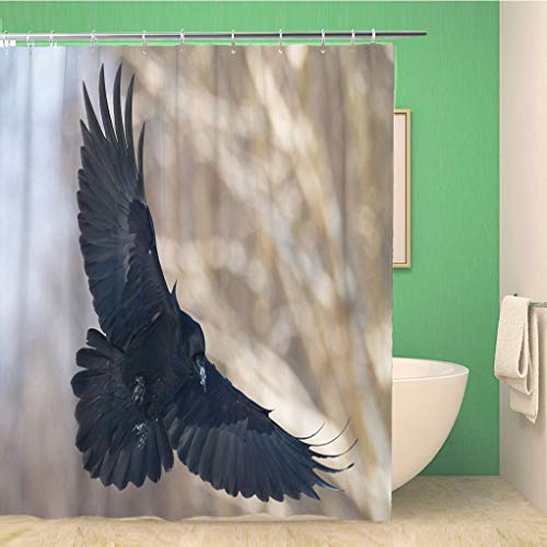 Awowee Bathroom Shower Curtain Birds Flying Black Common Raven Corvus Corax Scary Creepy 60x72 inches Waterproof Bath Curtain Set with Hooks -