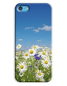 Daisy Dukes Case for your iPhone 5C wangjiang maoyi