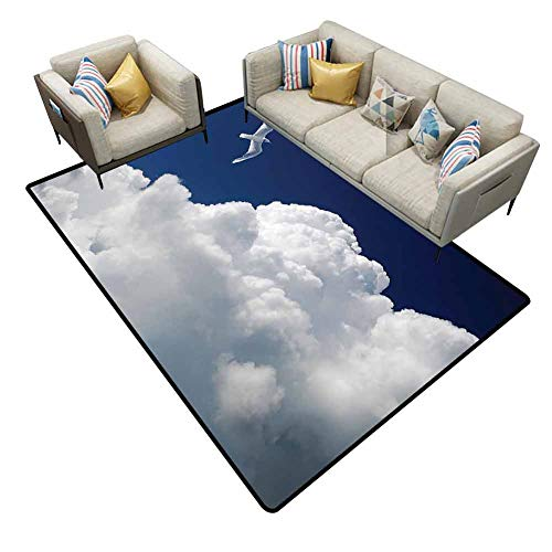 Office Chair mat for Carpet Seagulls Decor Collection Cloudy Sky and Flying Seagull Sunny Forecast Meteorology Cloudscape Rugs for entryway Area 7'6x7'6 (Contemporary Forecast Revolution)
