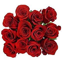 50 Fresh Red Roses   50 cm. long (20'') (50)
