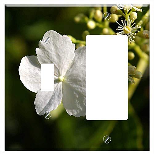 1-Toggle 1-Rocker/GFCI Combination Wall Plate Cover - Climbing Hydrangea Blossom Bloom White Blosso