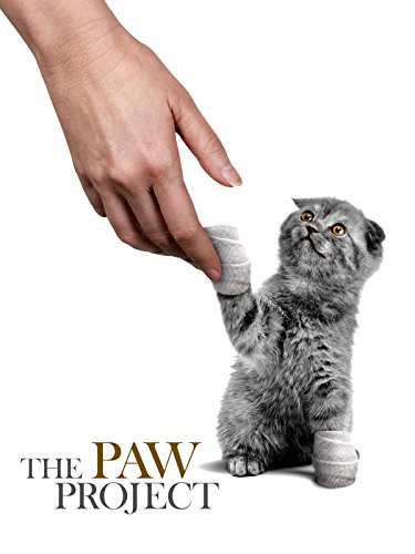 One Ind Graphics - The Paw Project