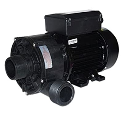 Sundance Spas LX Circulation Pump