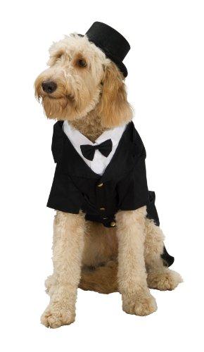 Rubie's Dapper Dog Pet Costume, (Bride Pet Costumes)