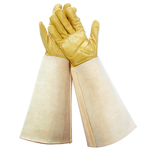 Premium Elbow Length Gloves for Thorns, Rose Gloves, Cactus Gloves, Blackberry Gloves, Cactus Gloves, Leather Gardening Gloves with Thorn Proof Canvas Gauntlet (Medium)