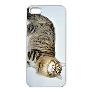 Cat Is Thinking Hight Quality Plastic Case for Iphone 5s
