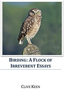 other irreverent essays Free short story papers, essays,  this irreverent generation [of the 1950's] has mocked at hawthorne's struggling souls who torture themselves over .