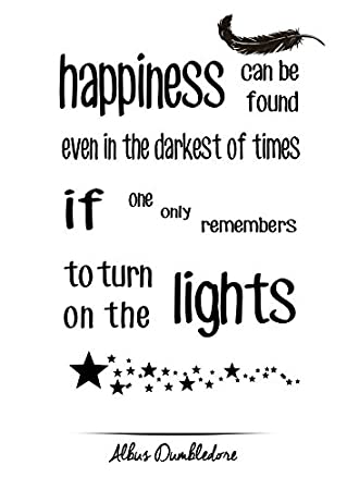 happiness can be found harry potter quote photo fridge magnet