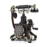 ZHILIAN European Retro Black Home Phone Landline Fixed Telephone Rotary Button Fixed Button Two Optional (Color : Fixed Button)