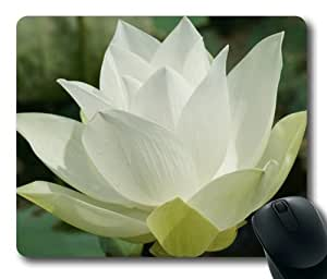Beautiful Flower-3 Rectangle Mouse Pad by Sakuraelieechyan