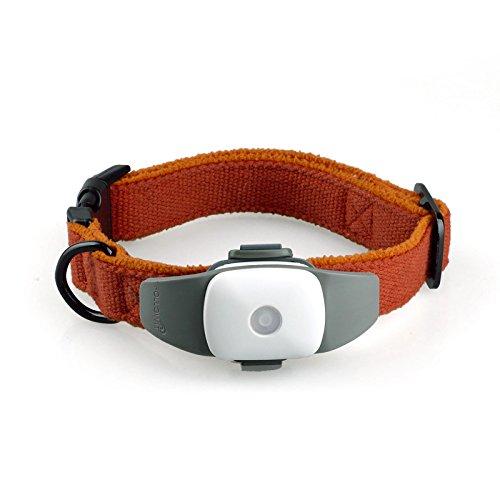 FSOSOO Mini-GPS-Tracker wasserdicht Hund Collar Locator Anti-Diebstahl-Gerät Haustier Anti-verlorene Mehrfachnutzung eines Online-Tracking-Plattform