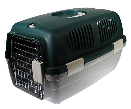 (Shop4Omni 19 Inch Plastic Pet Taxi Travel Cat Carrier/Small Dog Kennel (Green))