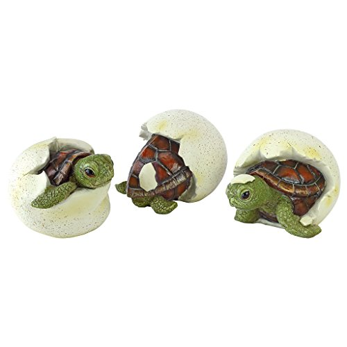 (Design Toscano Out of The Shell Baby Turtle Triplet Statues)