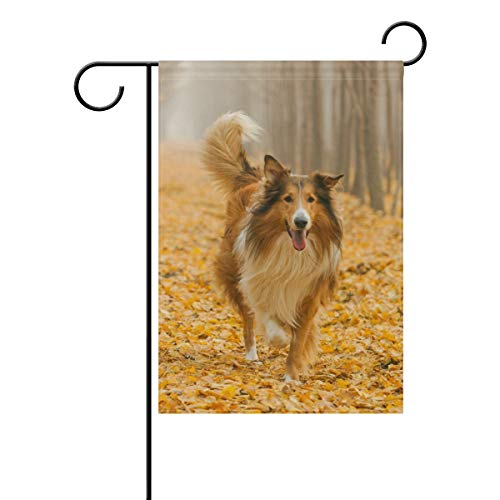 (Hokkien Rough Collie Dog in Outdoors Garden Flag Banner 12 x 18 Inch Decorative Garden Flag for Outdoor Lawn and Garden Home Décor Double-Sided)
