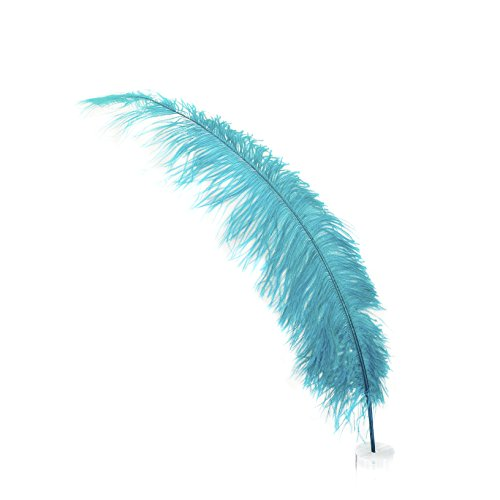 Dark Aqua Natural Ostrich Feather Spads - 18-24