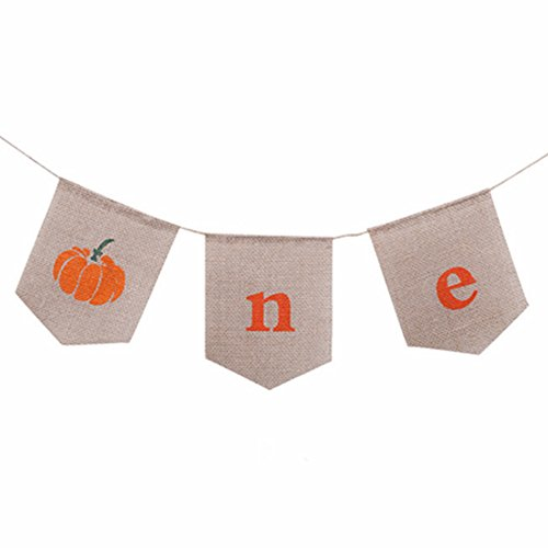 (Boy Girl First Birthday Party Pumpkin ONE Highchair Banner 1st High Chair Garland)
