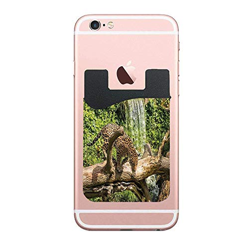 - CardlyPhCardH Jaguar Cat on a Tree Trunk Waterfall Endangered Species Wild Life Fast Animal Image Phone Pocket,Cell Phone Stick On Card Wallet,Credit Cards/ID and All Smartphones 2 PCS