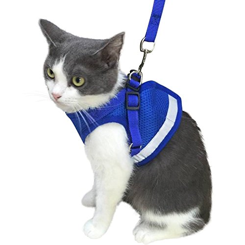 Dog Cool Stripe (KZHAREEN Cat Harness with Leash for Kitty Puppy Small Dogs Animal Adjustable Soft Mesh)