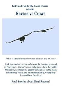 Ravens vs Crows