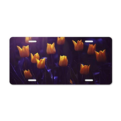 MilitaryAutoTag Sun Kissed Tulips Customizable Aluminum Metal License Plate Cover for Auto Cars, Car Tag Sign for Women/Men, 12 x 6 Inch