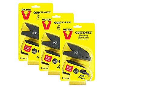 (Victor Quick-Set Mouse Trap - 3 Pack (6 Traps) M137 - One touch set)