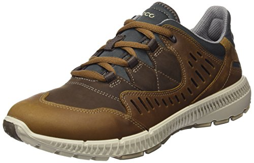 ECCO Women's Terrawalk Trail Runner, Camel/Cocoa Brown, 36 EU/5-5.5 M US