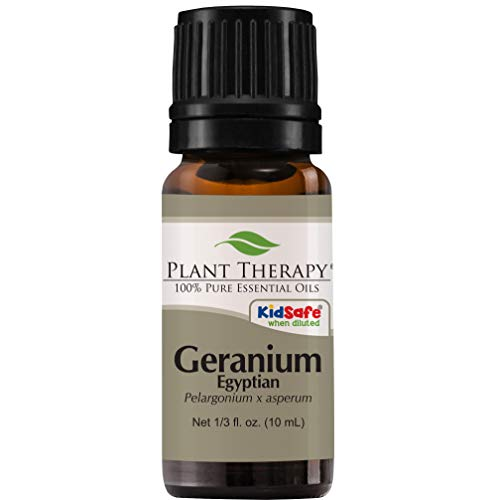 Plant Therapy Geranium Egyptian Essential Oil | 100% Pure, Undiluted, Natural Aromatherapy, Therapeutic Grade | 10 milliliter (1/3 ounce)