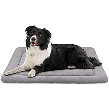 Amazon.com : Hero Dog Medium Dog Bed 35 inch Crate Pad Mat