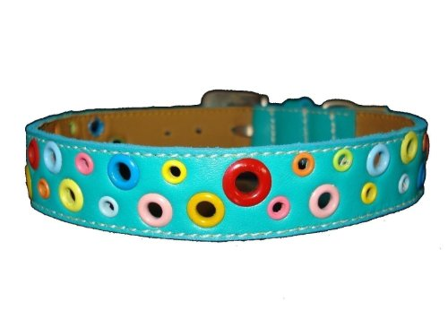 Loki Puppy Leather (The Cool Puppy Loki Puppy Leather Dog Collar - Turquoise Large (12-14 inches))