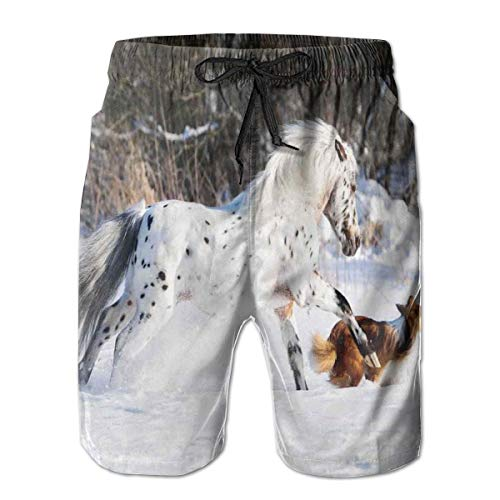 Men Swim Trunks Beach Shorts,Legendary Appaloosa Pony and Sable Border Collie Runs Gallop in Winter Photo Print XXL